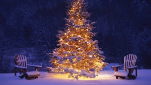 7007087-christmas-tree-wallpaper