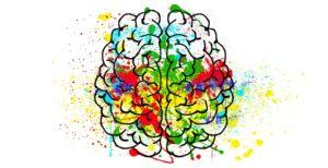 brain recreation